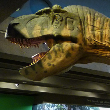 Dinosaurs: Modeling the Mesozoic picture
