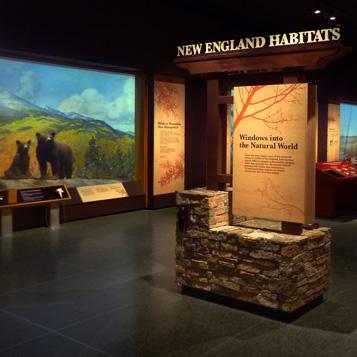 New England Habitats picture