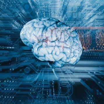 Health Fair: Explore the Brain